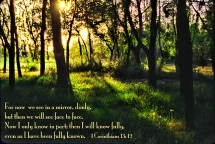 1 Corinthians 13:12-27