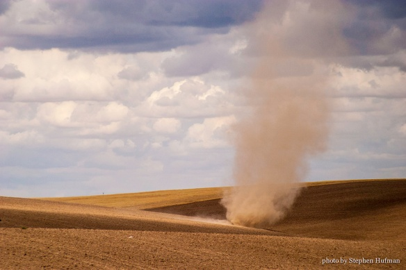 Dust devil over the wheat fields of Eastern Washington