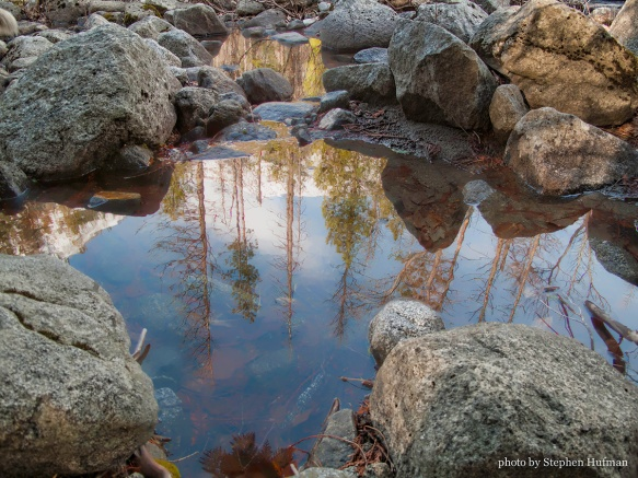 Icicle River reflecting pool