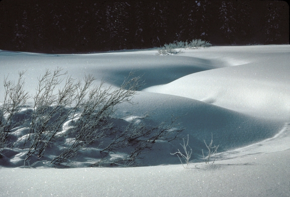 snow covering a meandering stream