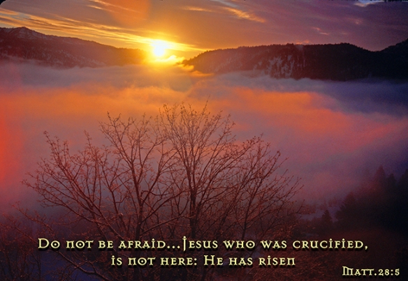 Do not be afraid for He has risen