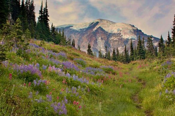 Wonderland Trail, Mt. Rainier NP