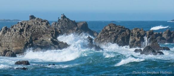 SH_180331-Monterey-3389